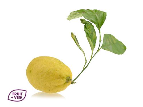 Lemon (Un-Waxed)