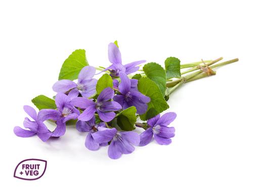 Edible Viola