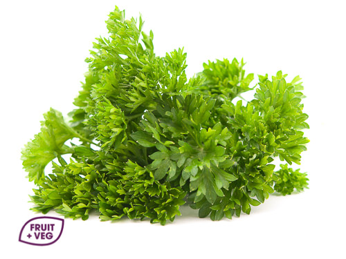 Fresh Curly Parsley