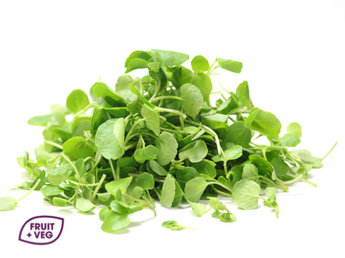 Micro Watercress