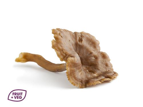 Chanterelle Gris/Jaunes Mushrooms