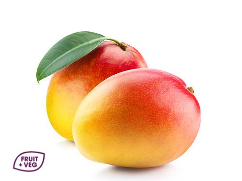 Mango Sea Freight